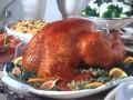 All In One Turkey Kit